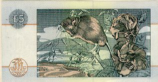 Mouse_banknote